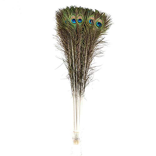 iMeshbean 10pcs Natural Long Peacock Feathers - 30