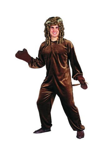 RG Costumes Adult Lion Costume