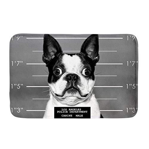 INSTANTARTS Funny Boston Terrier Doormats Anti-Slip House Garden Gate Carpet Door Mat Floor Pads ()