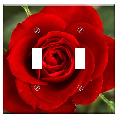 Switch Plate Double Toggle - Red Rose Flower Petals Flora Roses Love Valentine