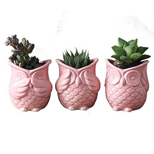 Clound city one Set of Pink Owl Ceramic Flower Planter Succulent Plants Pot