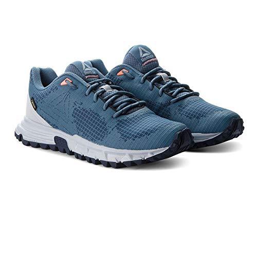 Sawcut Slate blue di Chaussures Grey De cloud Femme Reebok Navy 0 6 Fitness collegiate Multicolore 000 Gtx dqwUSF1