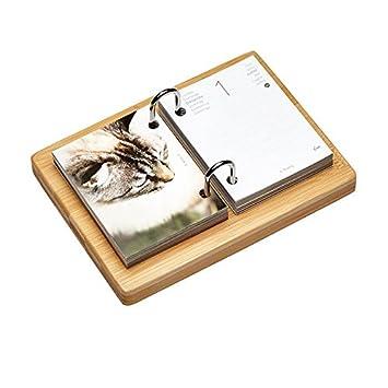 Yvon - Lote de 5 cajas agenda éphéméride gatos Yvon: Amazon.es: Oficina y papelería