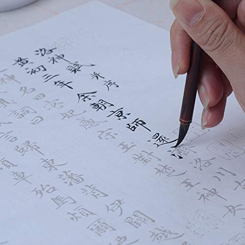 (Tianjintang Chinese Calligraphy Writing Sumi Paper Xuan Paper for Calligraphy Learner 洛神赋 赵孟頫(34cm x 138cm, White))