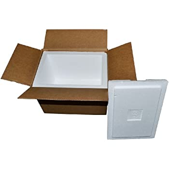Amazon Com Insulated Shipping Containers 13 3 4 Quot X 11 3