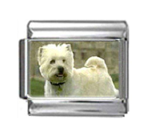Stylysh Charms WEST Highland White Terrier Dog Photo Italian 9mm Link DG392