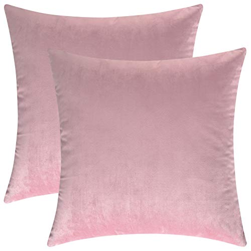 Mixhug Decorative Throw Pillow Covers, Velvet Cushion Covers, Solid Throw Pillow Cases for Couch and Bed Pillows, Light Pink, 20 x 20 Inches, Set of 2 (Pink Sofa Velvet Pale)