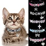 "HOW'S YOUR DOG ""Bling-a-licious"" Name-Me Personalized Necklace for Dogs and Cats – Size X-Small, My Pet Supplies"