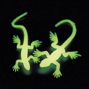 Glow in the Dark Lizards