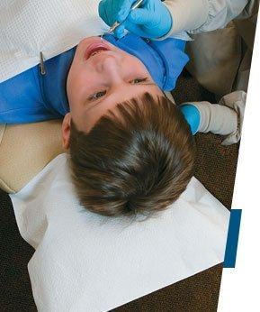 Avalon Chiropractic Headrest Paper Rolls - Smooth - 12'' x 225'