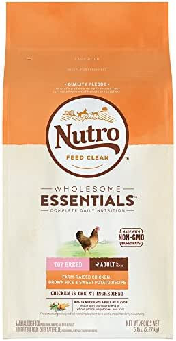 Dog Food: Nutro Wholesome Essentials Adult Toy Breed