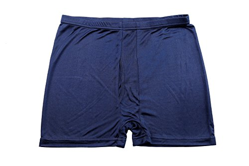 Men's Underwear 100% Mulberry Silk Brief Panties Boxer Briefs (L, DARK BLUE)