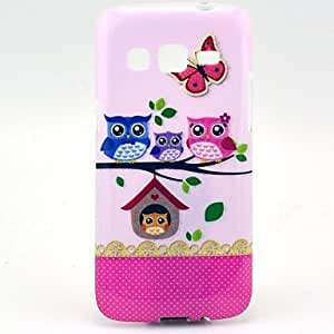 PEACH The Cat Family Pattern with Stand for Samsung Galaxy Express 2 G3815