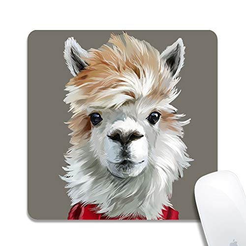 (Computer Llama Wearing Scarf Square Mouse Pad (7.8x7.8 Inch), Printed Rubber Desk Accessories Mouse Mat)