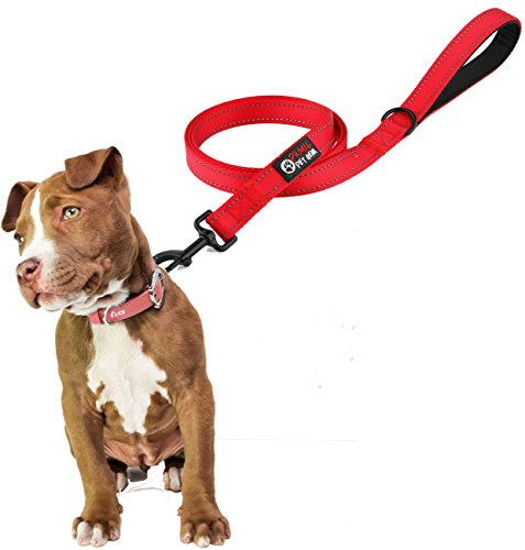Primal Pet Gear Dog Leash - Extra Heavy Duty - Thick 3mm Nylon - 6ft Long - Premium Quality - 1