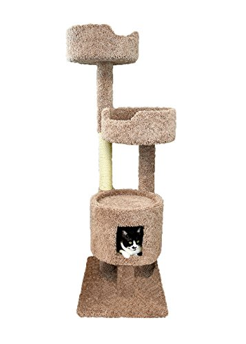 New Cat Condos Brown Cat Penthouse, Large (Penthouse Condo)
