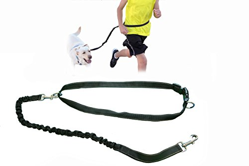 gging Dog Leash; Bungee Running Dog Leash with Reflective Strip Black Large (Leash Clip Strip)