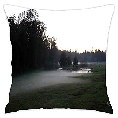 """Asefcnxkjii Decorative Throw Pillow Covers for Couch, Sofa, or Bed Modern Quality Design 18""""x18"""" inches"""
