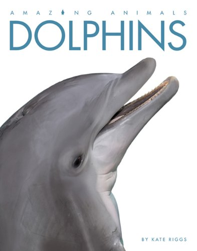 Amazing Animals Dolphins Kate Riggs product image