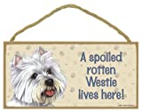 (SJT61974) A spoiled rotten Westie lives here wood sign plaque 5
