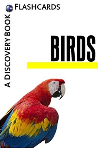 Birds: A Discovery Book (Flashcards)