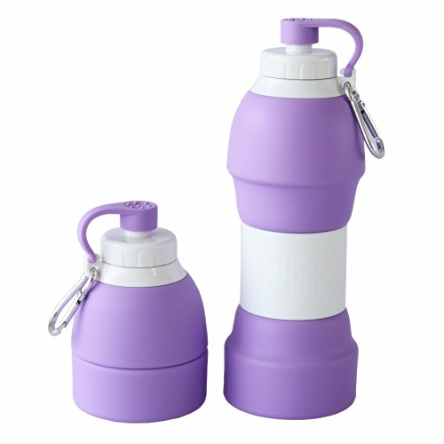 LEWONDE Collapsible Water Bottle - BPA Free 20 OZ Travel Mug - Cool Gear for Hiking Camping Cycling Sport (Lavender)