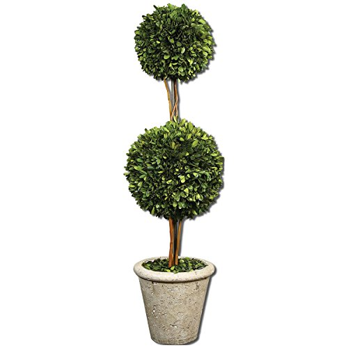 Uttermost 60106 Two Sphere Topiary Preserved Boxwood Planter
