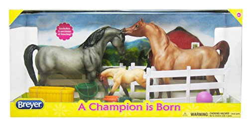 Breyer A Champion is Born Toy