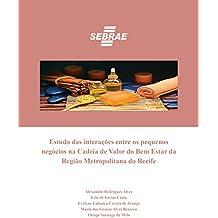 Estudo das interações entre os pequenos negócios na Cadeia de Valor do Bem Estar da Região Metropolitana do Recife
