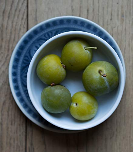 (Home Comforts Canvas Print Greengages Noble Plum Yellow Plums Greengage Vivid Imagery Stretched Canvas 32 x)