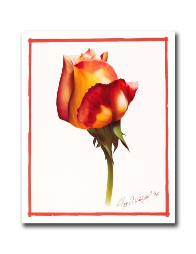 Orange And Red Rose Flower Floral Wall Picture 8x10 Art (8x10 Art Flower)