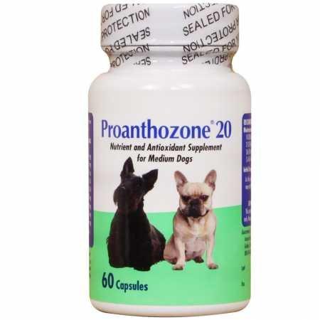 Proanthozone 20 mg for Medium Size Dogs (60 Caps)