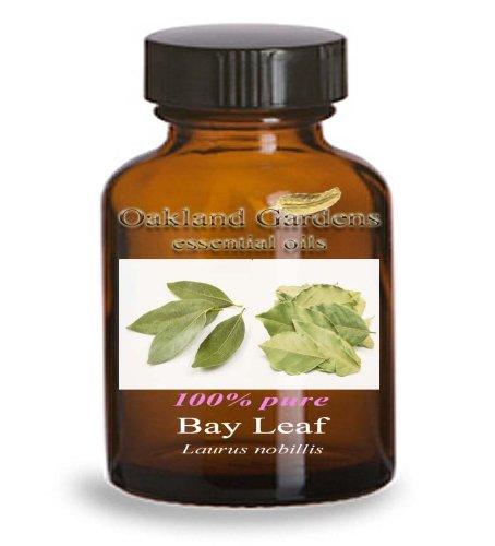 BAY LEAF Essential Oil - 100% PURE Therapeutic Grade Essential Oil - Laurus nobillis - Essential Oil By Oakland Gardens (4 oz Bottle)