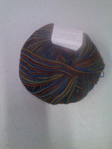 Classic Elite Yarns Silky Alpaca Lace Color 2486 -