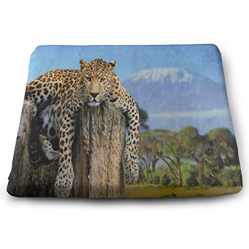 Seat Cushion Animal Leopard Print Mountain Tree Chair Cushion Customized Offices Butt Chair Pads for Wheelchairs