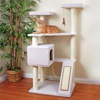 Petco Premium Tree Terrace for Cats, 28.7″ L X 35.8″ W X 58.6″ H, My Pet Supplies