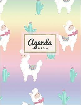 Agenda 2019: Semanal Diario Organizador Calendario   Rainbow ...