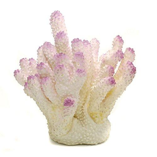Acropora Ornament (Penn-Plax Acropora Aquatic Ornament (One Size) (White))
