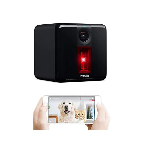 Petcube [2017 Item Play Smart Pet Camera with Interactive Laser Toy. Remote Dog/Cat Monitoring with HD 1080p Video, Two…