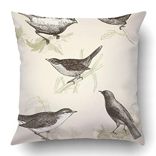 YYERINX Throw Pillow Covers Birds Vintage Engraved Cent