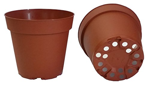 (30 Plastic Pots for Plants, Cuttings & Seedlings, 4-Inch, Standard. Color: Terracotta)