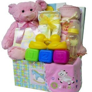 Sweet Baby Care Package Gift Box with Teddy Bear, Pink Girls (Baby Gift Packages)