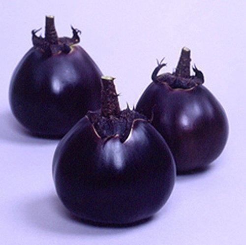 Kamo Eggplant Seeds - 1