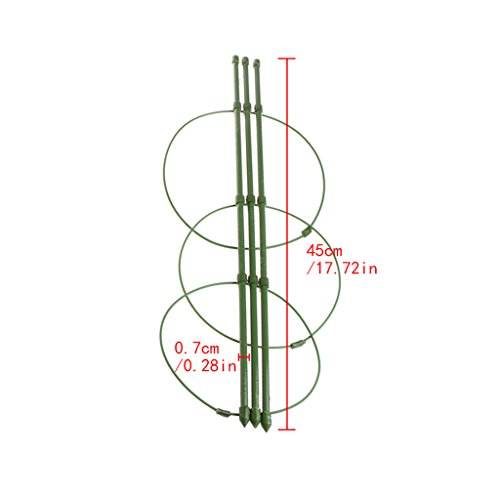 Garden Climbing Frame (Amrka Garden Plant Support Climbing Plants Conical Trellis Supporter Frame (Height: 45cm/17.72