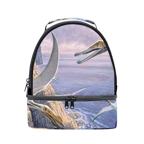 Lunch Bag Flying Pterosaurs Birds Ocean Womens Insulated Lunch Tote Zipper Kids Lunch Box