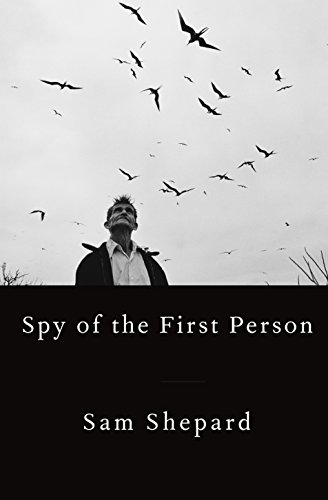Image of Spy of the First Person