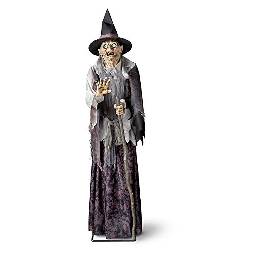 Lunging Reaper Animated Prop (Tall Lunging Haggard Witch Halloween Decoration | Perfect Frightening Motion Activated Home Indoor Decor by the Entryway or Front Porch)