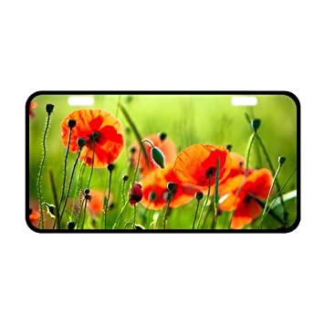 Amazon hot sale discount tag amazing beautiful poppies poppy hot sale discount tag amazing beautiful poppies poppy flowers strong aluminum car license plate 118quot mightylinksfo