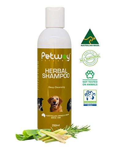 PETWAY Dog Shampoo - Herbal Pet Shampoo with Aloe Vera, Citronella & Rosemary Oil, Natural Dog Shampoo for Smooth & Soft Coat, pH Balanced, Free of Paraben and Phosphate, Soap Free - 250ml