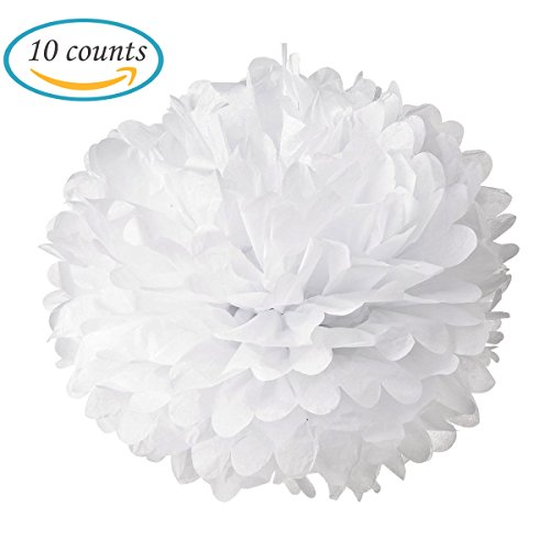 10pcs White Tissue Hanging Paper Pom-poms, Hmxpls Flower Ball Wedding Party Outdoor Decoration Premium Tissue Paper Pom Pom Flowers Craft Kit (White Ball Tissue Art)